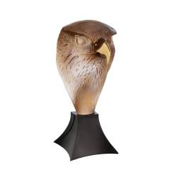 Falcon Head by M. Van Der...