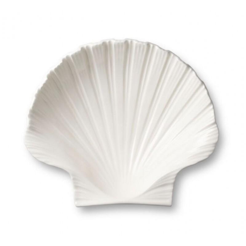 Shell Platter Medium