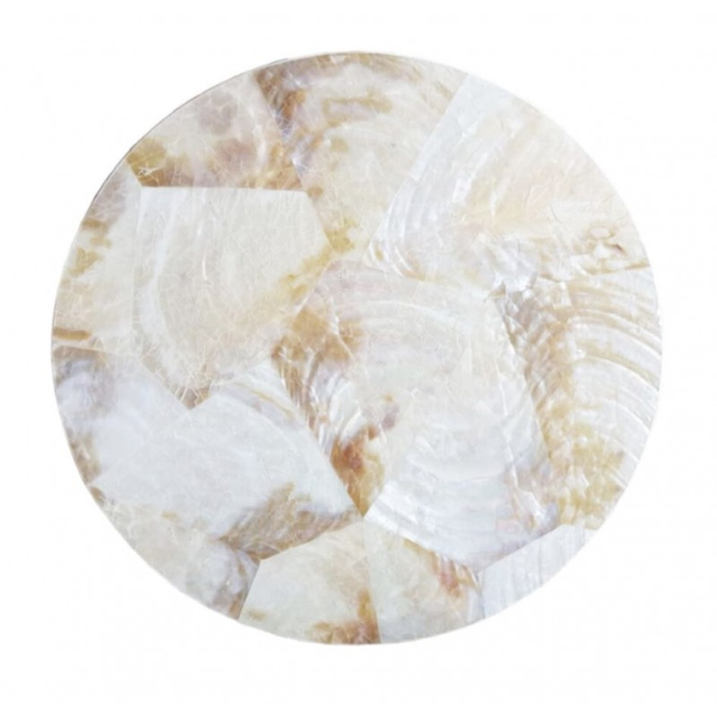 Round White Pearl Shell Coaster