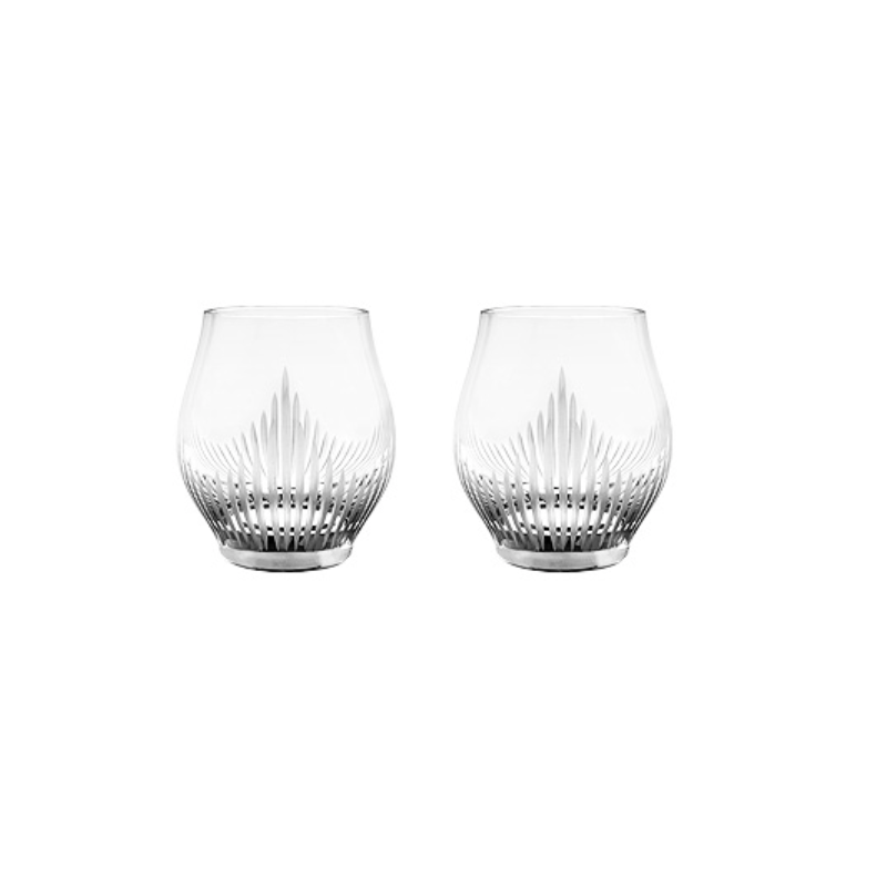 100 Points Shot Glasses Set of 2