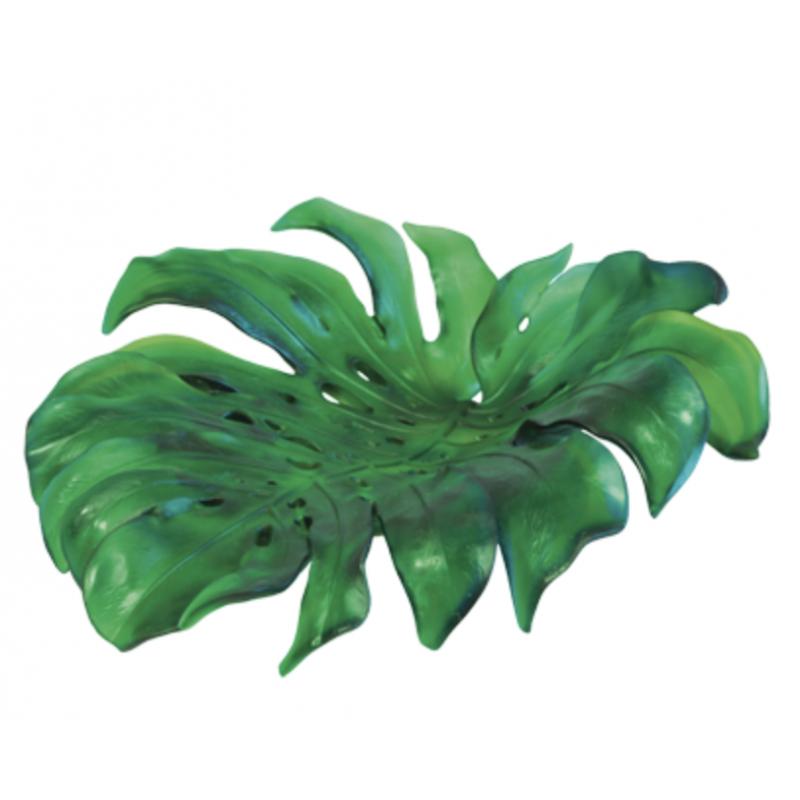 Coupe Monstera Verte de Emilio Robba Moyen Modèle