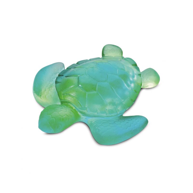 Mini Tortue Turquoise