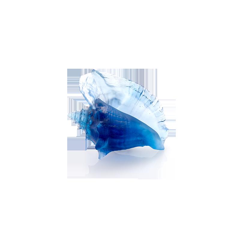 Mer de Corail Coquillage Conque Bleu Edition Numérotée