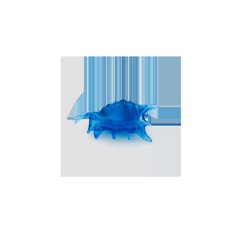 Mer de Corail Coquillage Petit Modèle Bleu