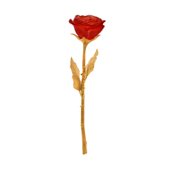 Red Eternal Rose
