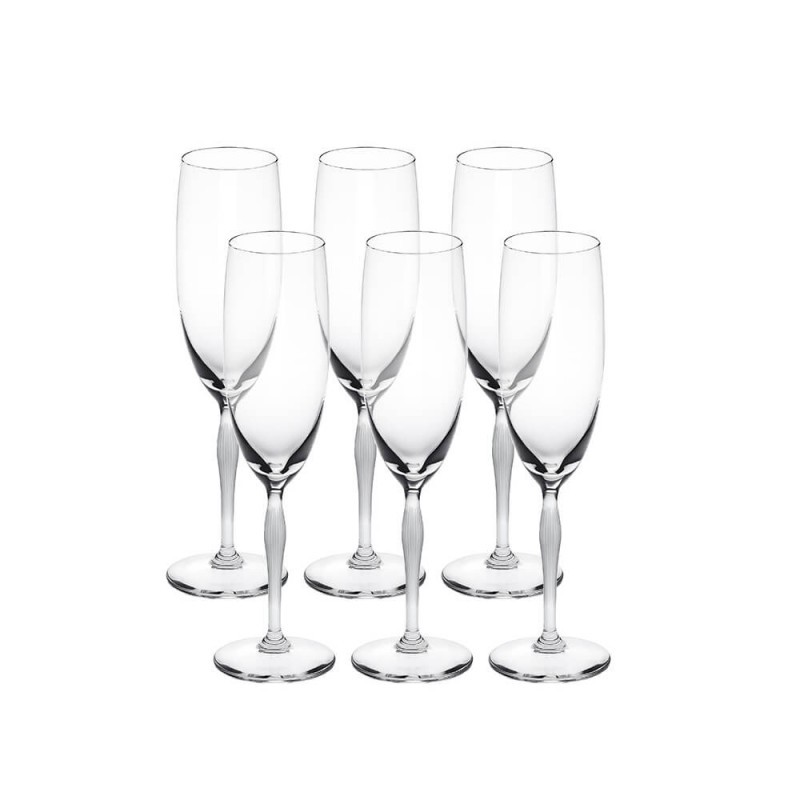 100 Points Champagne Glass - Set of 6