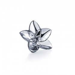 Bloom Silver