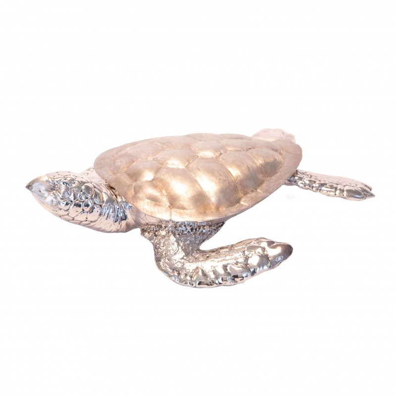 Marine Turtle - Small Size