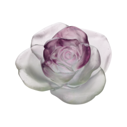 Rose Passion Decorative...